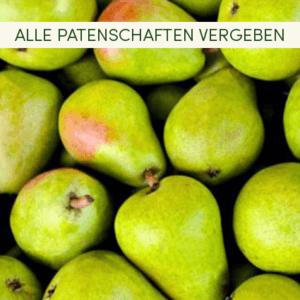 Birnen ausverkauft