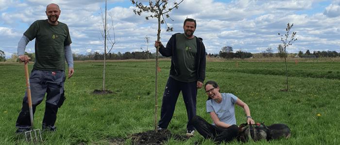 Birnenbaum-Patenschaft auf Lebenszeit