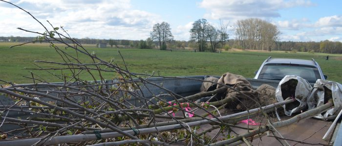 Erste Pflanzung im Liebenwalder Naturgarten
