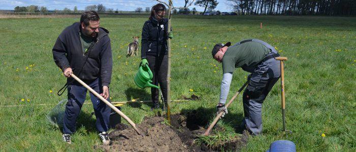Liebenwalder Naturgarten: Wir haben gesät