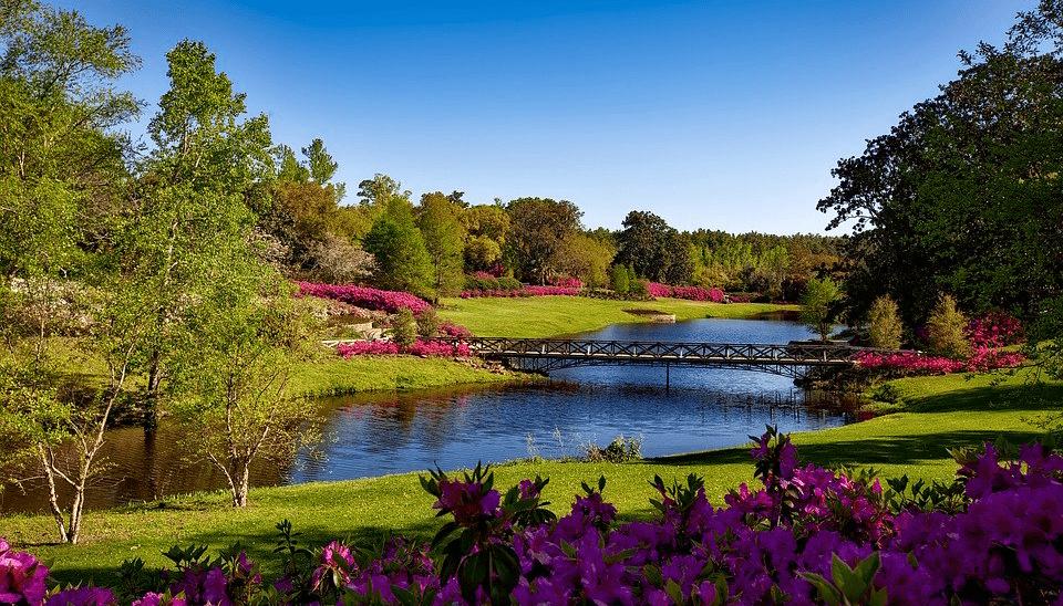 Tipps gegen Dürre: So macht Ihr Euren Garten fit für den Sommer