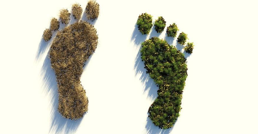 Weniger C02 – besserer ökologischer Fußbabdruck