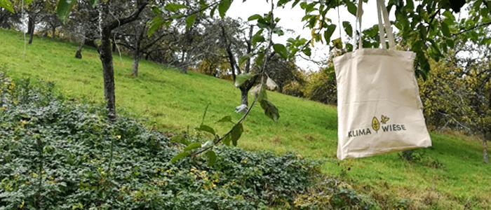 Blühpatenschaft auf Lebenszeit in Weinstadt